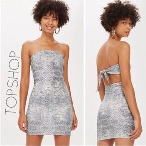 NWT Topshop snake open back strapless dress 12 L